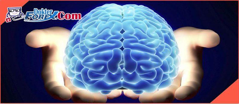 Otak Manusia Vs. Komputer Dalam Forex Trading